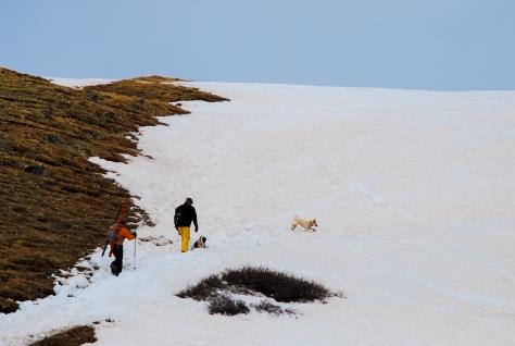 Loveland Pass Hike-Ski