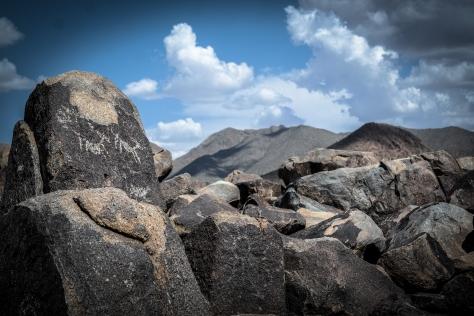 elk petroglyphs