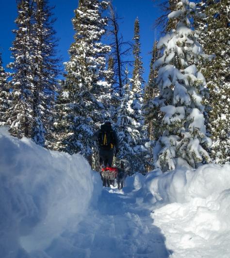 emma on trail