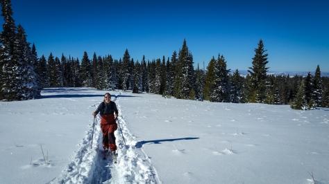 ski to summit 2