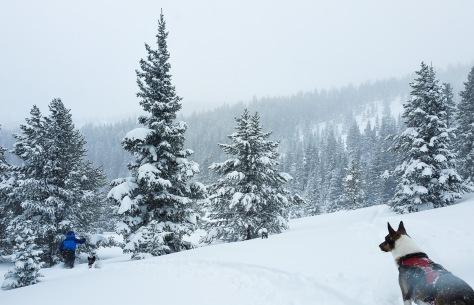 sam ski_