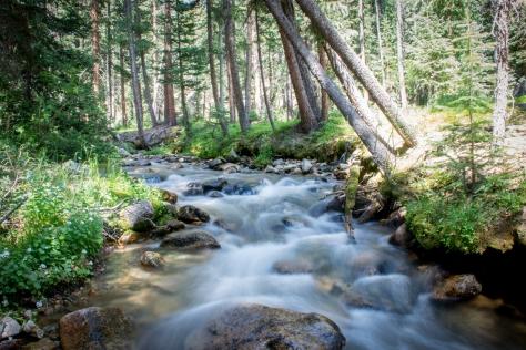 Tomichi Creek 2