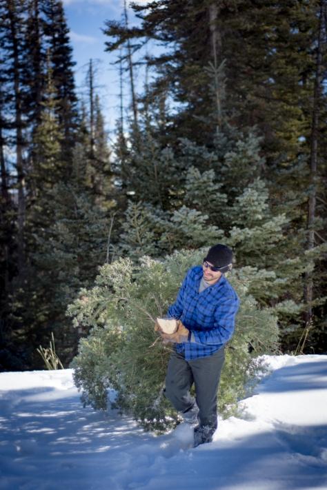 Tree Hunt_sm-17
